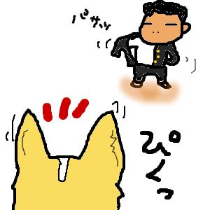 Cocolog_oekaki_2011_05_20_12_01